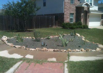 Frontyard Desert Garden